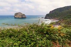 La costa rocciosa dell'oceano attraverso un cespuglio Fotografia Stock