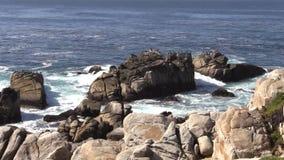 La costa scenica della California zumma video d archivio