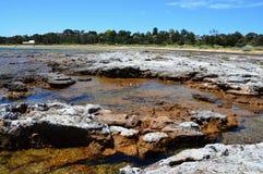 La costa selvaggia di Austalia del sud Fotografia Stock