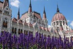 La costruzione del Parlamento a Budapest, Ungheria Particolari architettonici Fotografia Stock