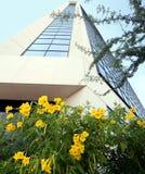 la costruzione fiorisce il colore giallo dell'ufficio Immagine Stock