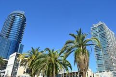 La costruzione più alta di Miami Immagini Stock