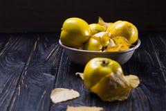 La cotogna è frutti di autunno Fotografia Stock