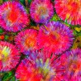 La couleur d'eau rose fleurit le fond Image stock