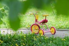 La couleur magenta badine le tricycle avec les roues en plastique jaunes et le cadre en acier sur le chemin pavé avec des fleurs  Photo libre de droits