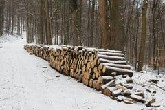 La coupe biologique de bois de chauffage ouvre une session l'utilisation industrielle de forêt photos stock