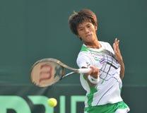 La Coupe Davis 2010 Image libre de droits