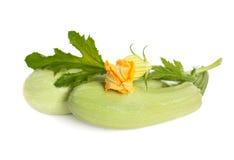 La courgette fraîche porte des fruits avec les lames et la fleur vertes Image libre de droits