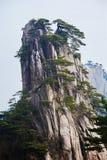 La crête et les pins de stalagmite Photographie stock