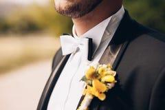 La cravatta a farfalla dello sposo Fotografia Stock
