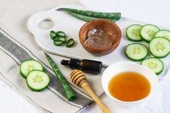 La crema casalinga della maschera del corpo degli ingredienti naturali sfrega con aloe Vera Cucumber immagine stock