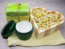 La crema cosmetica per cura e la margherita del fronte fiorisce il sapone natual Fotografie Stock