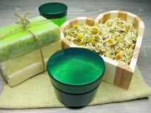 La crema cosmetica per cura e la margherita del fronte fiorisce il sapone natual Immagini Stock