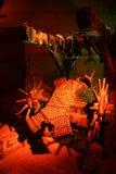 La cremagliera Immagini Stock
