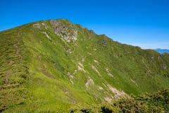 La cresta coperta di erba verde contro il cielo blu Fotografie Stock
