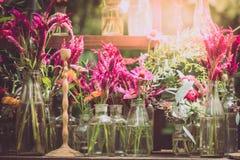 La cresta de gallo, lana china florece y las flores del gerbera en florero adornan Imagen de archivo