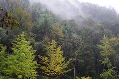La cresta de la estación ligera Peng de la pista Fotografía de archivo libre de regalías