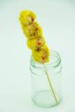 La crevette chinoise a coulé la boulette dans la bouteille d'herbe photos libres de droits