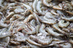 La crevette fraîche est sur le marché de produits frais Image stock