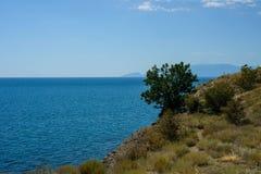 La Crimea, costa del sud della Crimea Fotografia Stock