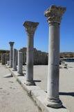 La Crimea. Hersones. Colonne greche Immagini Stock