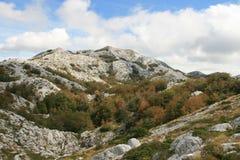 La Croatie/montagnes/végétation et roches colorées Image libre de droits