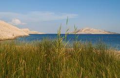 La Croazia, isola del PAG, Rucica, spiaggia, baia, erba, strada non asfaltata, rilassamento, facente un'escursione, festa, Europa Immagini Stock