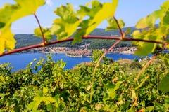 La Croazia, isola Korcula Fotografie Stock Libere da Diritti