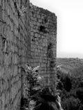 La Croazia, Zadar, bellezza, storia, Novigrad, fan e felice fotografia stock