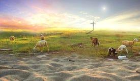 La croix de Jesus Christ sur le troupeau des prés Photo libre de droits