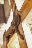 La crucifixión del fragmento de Jesus Christ de la estatua Foto de archivo libre de regalías