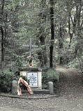 la cruz ocultada Imagen de archivo libre de regalías