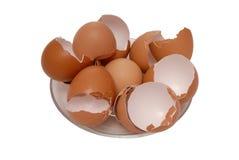 La cáscara de huevo está en la placa Foto de archivo libre de regalías