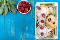 La cuajada apelmaza los molletes con las frambuesas, adornadas con el azúcar en polvo Imagenes de archivo