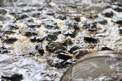 la cuajada de habichuelas preservada Fuerte-que olía/fermentó la cuajada de habichuelas con la cuajada del olor/de habichuelas co imagenes de archivo