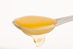 La cuchara cheramic blanca llenó de la miel de oro dulce Fotografía de archivo libre de regalías