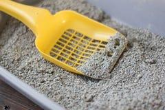 La cucharada amarilla en la caja de arena de los animales domésticos llenó por la litera Fotos de archivo