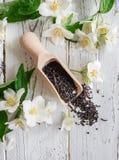 La cucharada de medición con té negro y el jazmín fresco florece Fotos de archivo libres de regalías
