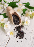 La cucharada de medición con té negro y el jazmín fresco florece Imagen de archivo