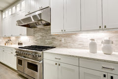La cucina gastronomica caratterizza la mobilia bianca fotografia stock