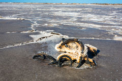 La cuerda de acero cubierta con la corrosión severa del lago de sal toma el sol foto de archivo