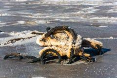 La cuerda de acero cubierta con la corrosión severa del lago de sal toma el sol imagenes de archivo