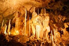 La CUEVA de los OSOS situada en las montañas occidentales de Apuseni imagenes de archivo