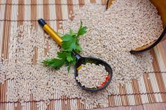 La cuillère en bois se situe dans l'orge perlée dispersée avec une branche de persil Photographie stock