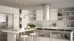 La cuisine en bois moderne avec les détails en bois, se ferment, île avec illustration stock