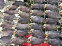 La cuisine vietnamienne : fruits de mer - poisson sec Photographie stock