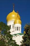 La cupola della chiesa ortodossa circondata dagli alberi fotografia stock