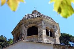 La cupola e le foglie immagini stock