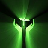 La cura della mano protegge la pianta verde Immagine Stock