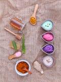La cura di pelle e casalingo alternativi sfrega con naturale ingredien Immagine Stock